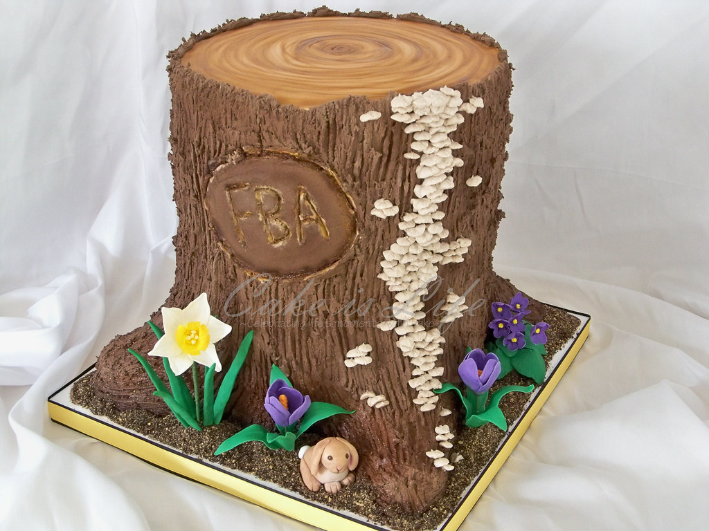 Spring Tree Stump Cake 042011 I Made This Cake For A