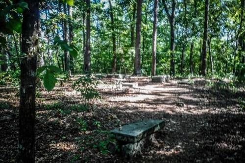 Harrisburg Plantation Cemetery-001