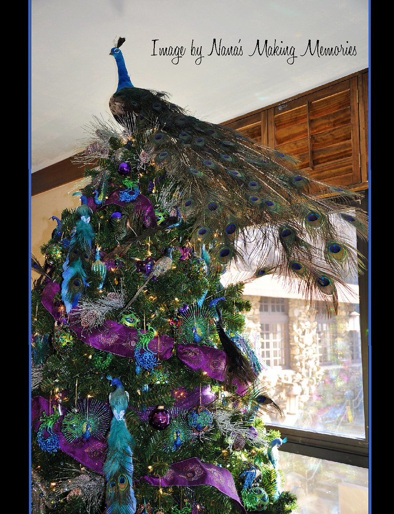 Peacock Christmas Tree Grove Park Inn One Of The Many