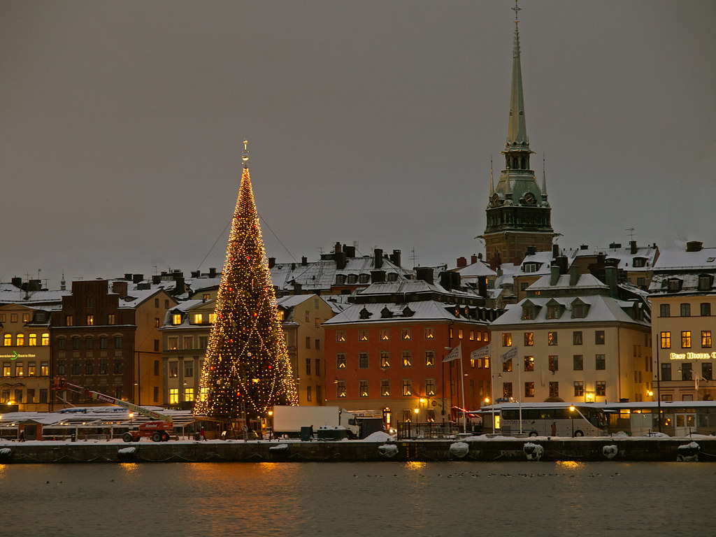 Christmas Tree In Stockholm Christmas Tree On The