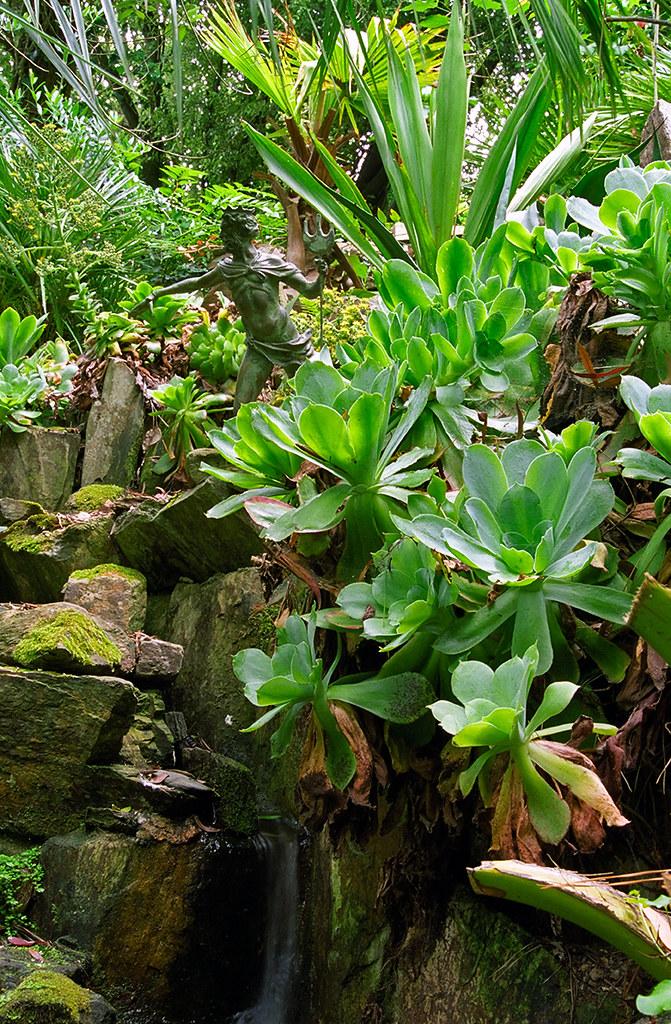 Lamorran Gardens Cornwall Uk A Coastal Garden With An