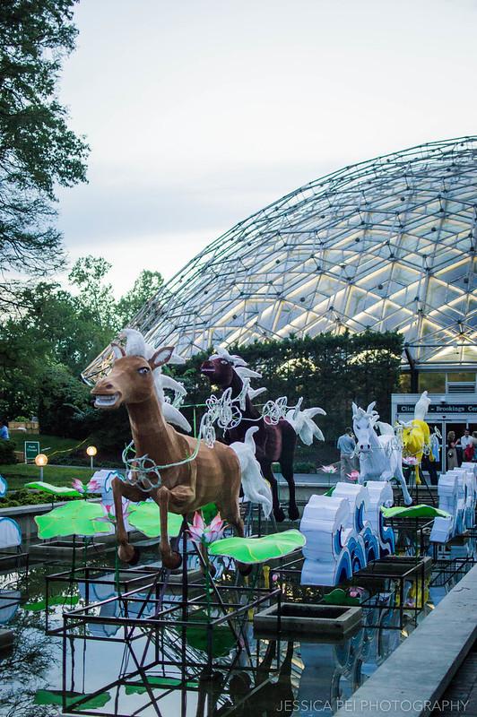 Missouri Botanical Garden Lantern Festival Climatron