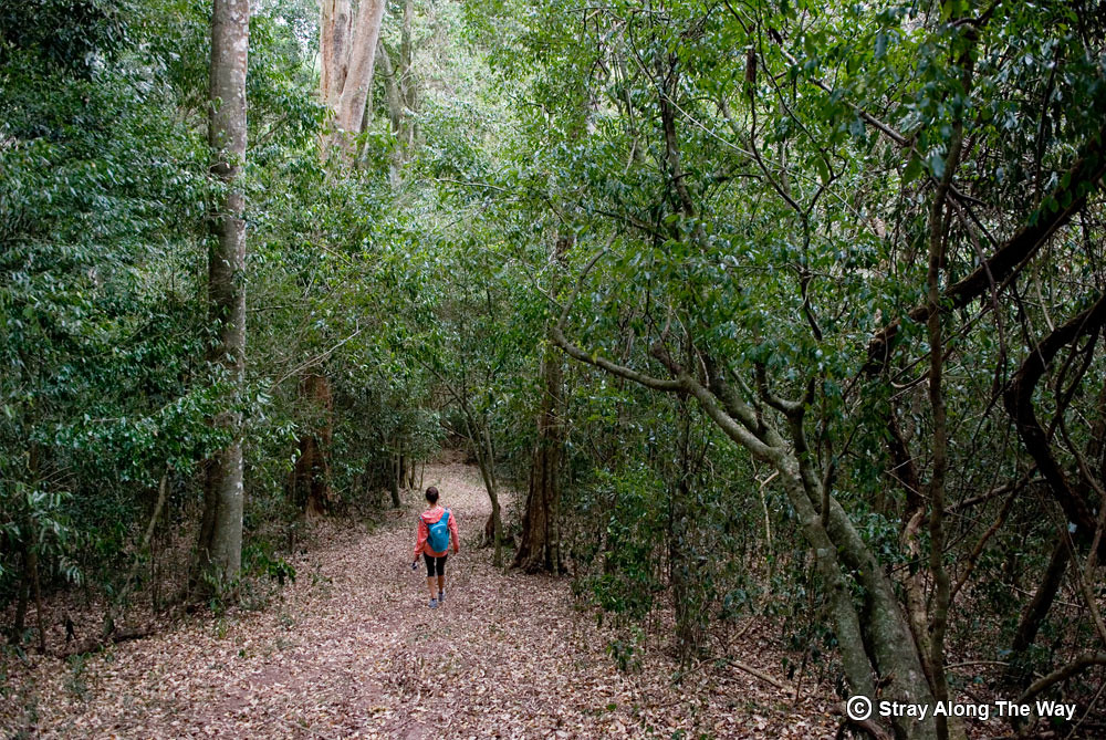 The-Entumeni-Nature-Reserve