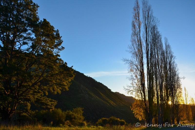 Wanganui river road sunset