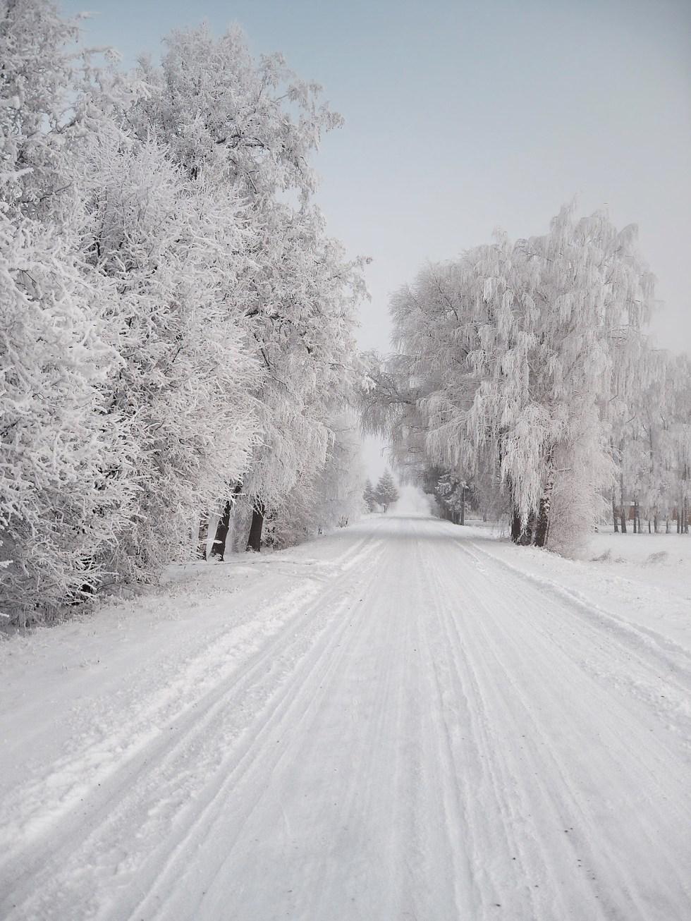 2012. gada ziema 08.12.2012