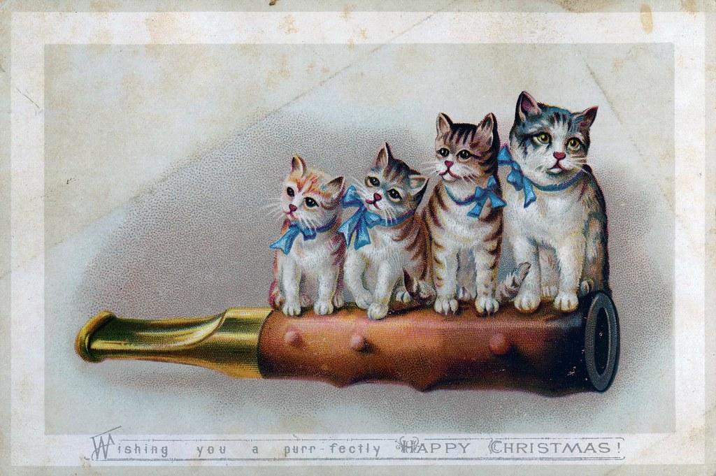 Victorian Christmas Card Nova Scotia Archives Flickr