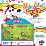 Como participar en la MARATON PUCH 2014 parque bicentenario - 11ago14