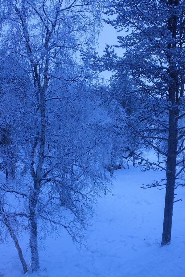 luminen_maisema