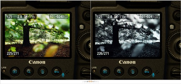 Het verschil in het beoordelen van een kleurbeeld en een zwartwit beeld