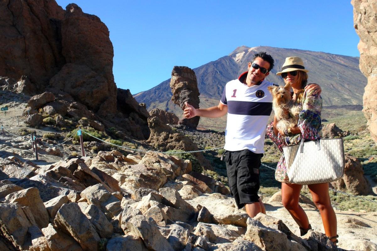 Viajar con Mascota mascotas Cómo viajar con perros y mascotas 30852510841 5a723bc969 o