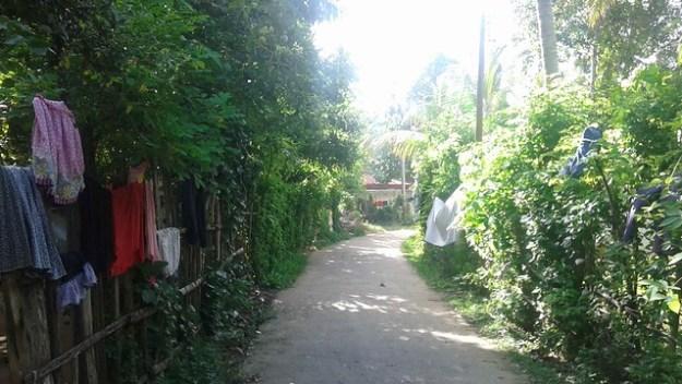 Our Neighborhood Street In Weligama Sri Lanka
