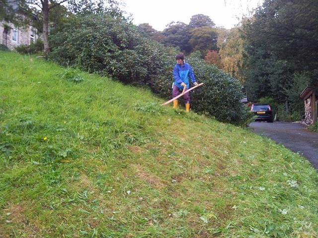 Sue scything on the wildflower bank