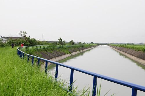 【散步水圳邊5】嘉南大圳新營支線:烏樹林橋這一段河面好寬(11 ys)