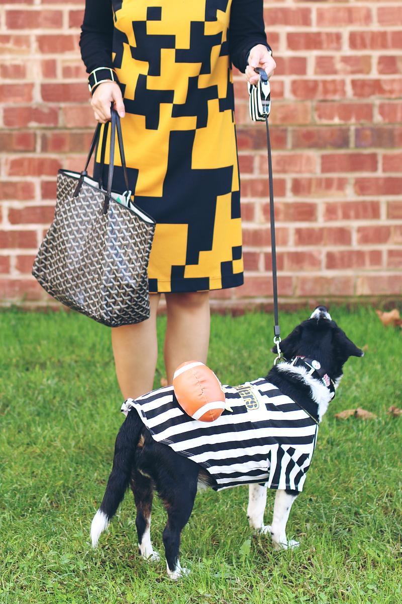 black yellow dress, dog football rufferee, referee, halloween costume