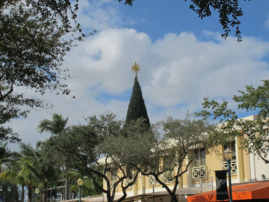 Delray Beach Christmas Tree Mike Cohen Flickr
