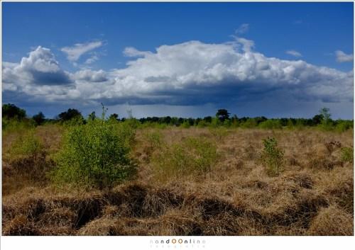 Donkere wolken boven de horizon. Single exposure shot in RAW, nabewerkt in Lightroom. (ISO200 - f/8 - 1/600 - Velvia film simulation
