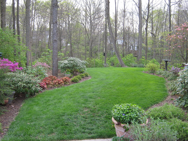 Wooded Backyard   Flickr - Photo Sharing! on Wooded Backyard Ideas id=81396