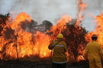 Two firefighters battle blazing wildfire