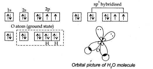 ncert-solutions-for-class-11-chemistry-chapter-4-chemical-bonding-and-molecular-structure-28