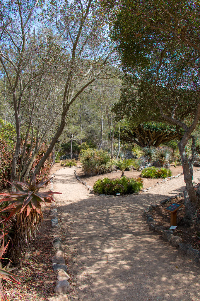 06.10. Wrigley Botanical Garden