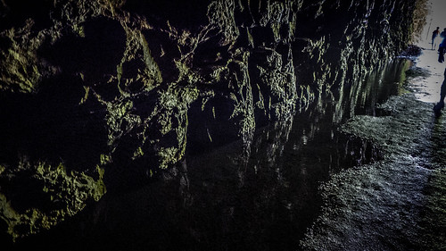 Stumphouse Tunnel-34