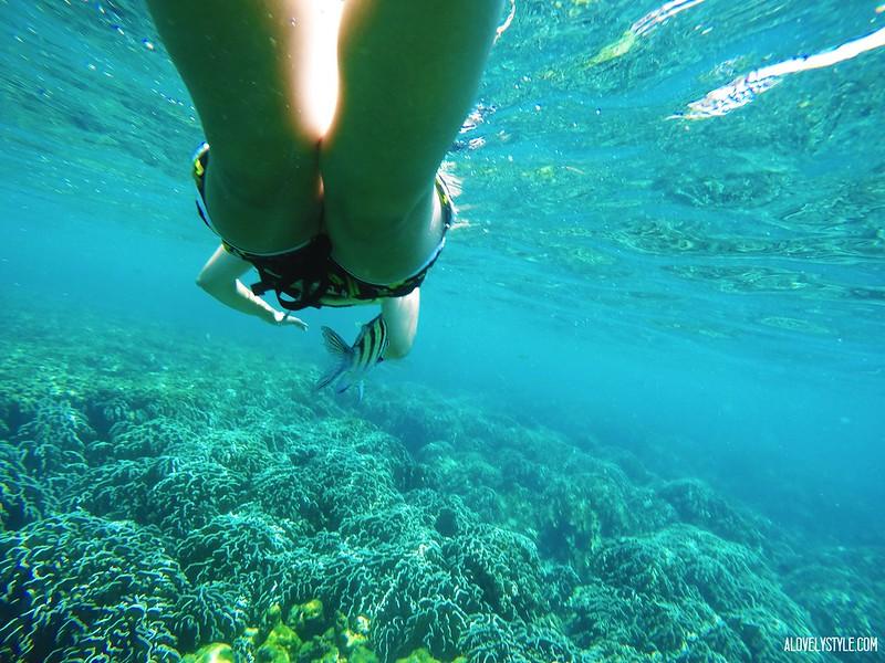 Snorkel Koh Lipe (3)