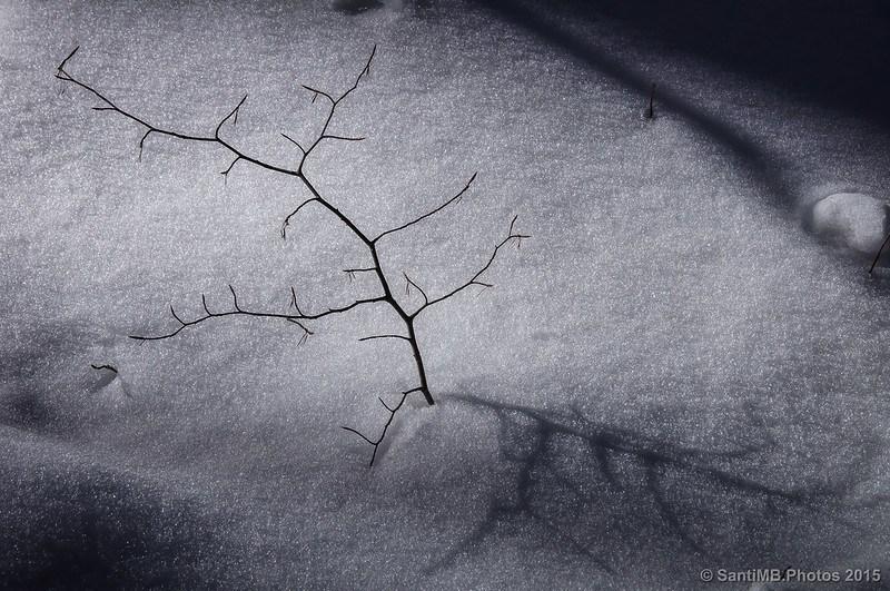 Una composición simple haciendo fotos en la nieve
