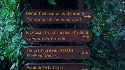 Bukit Nanas Trail Sign