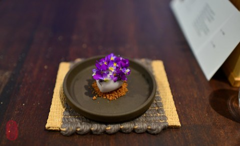 7th Course: Wild Violets