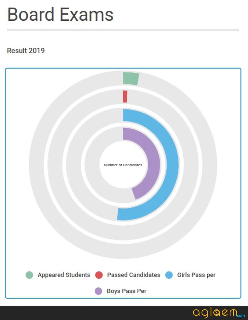 HBSE Result 2019