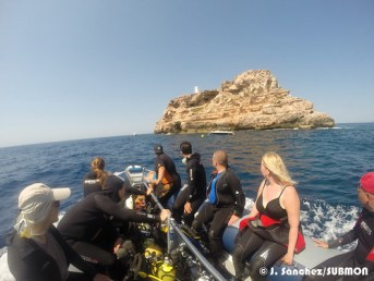 WildSea Divers-IsladelToro