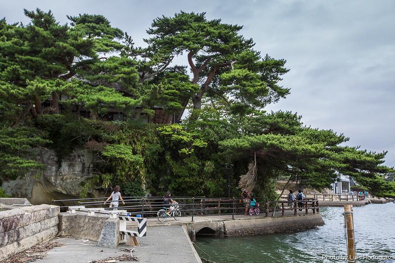 Matsushima-6