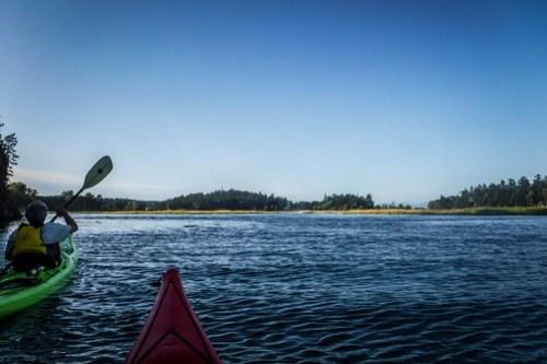 La Conner Kayaking-28