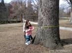 Anak-anak antusias mengukur diameter pohon.