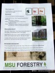 Leaflet tentang pohon.
