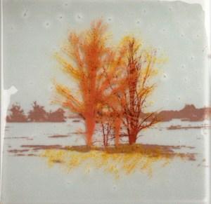 Cynthia Fielding's Glass tile