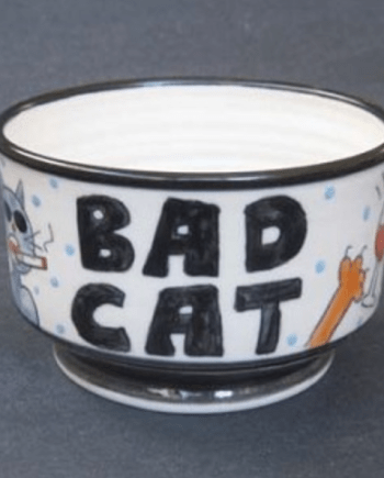 handmade hand decorated bowl that says bad cat