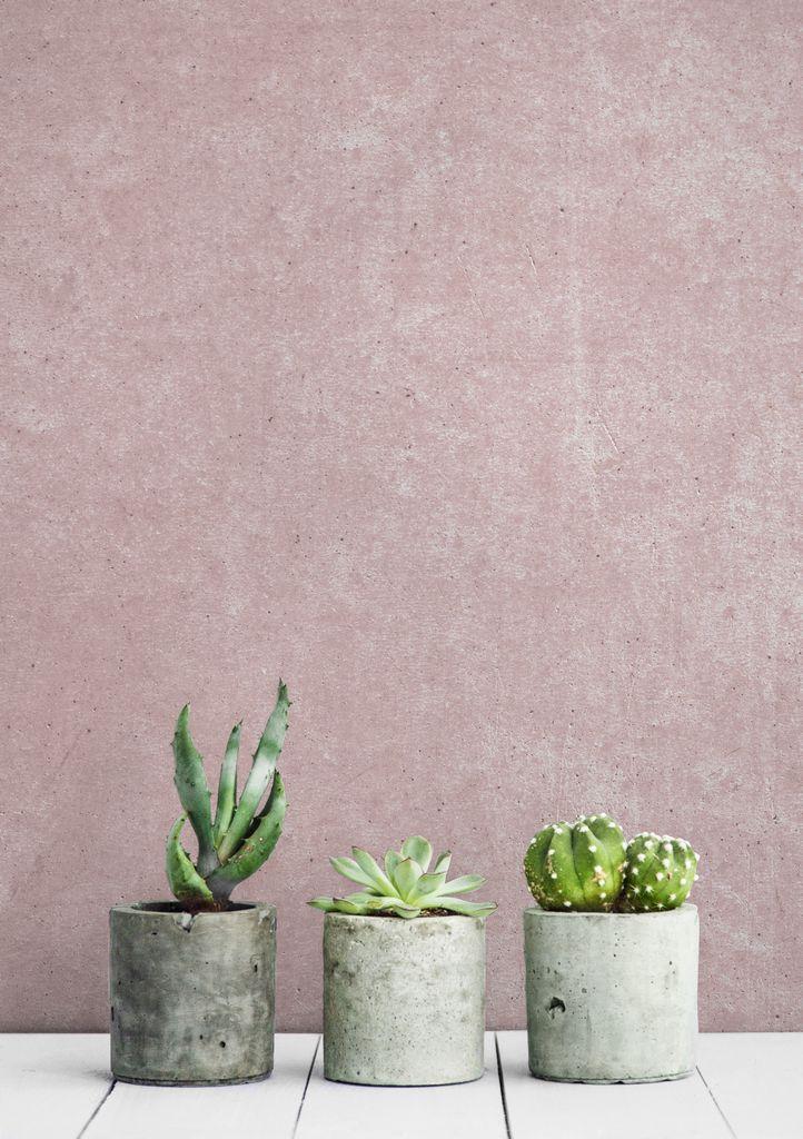 pink-concrete_c2p_project