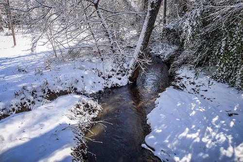 Greenville Snow-005