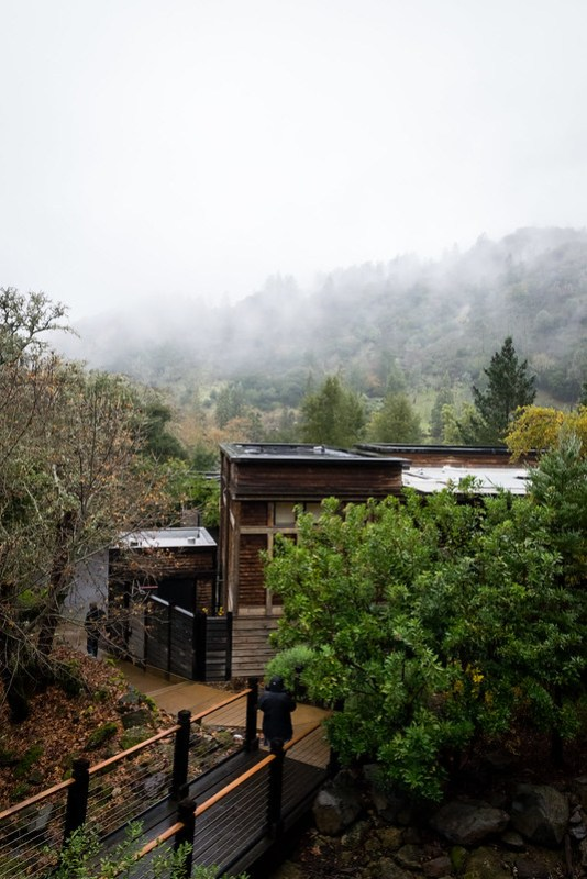 a misty morning view from our lodge