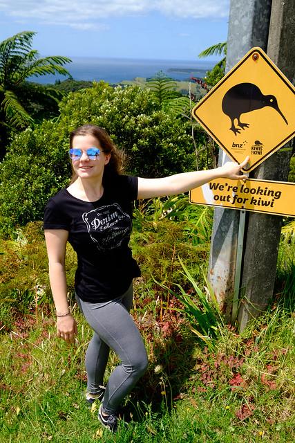 Nowa Zelandia - Kiwi