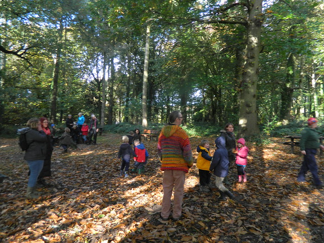 Wizards Forest School 5th Nov 2016
