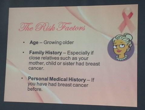 3-Risk Factors 1