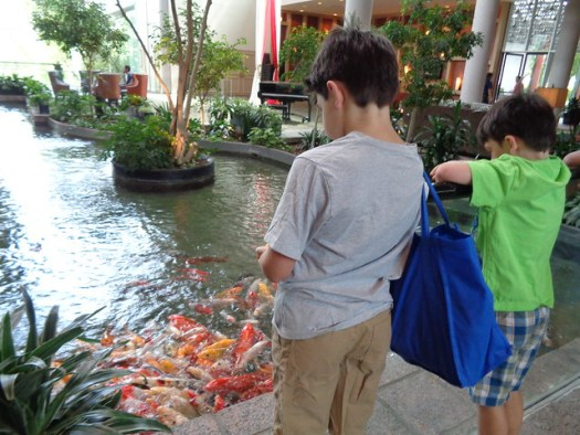 Shug and Shugie feeding goldfish at Omni Westside, Houston TX