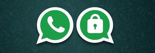 Eleito, prefeito abandona grupos do WhatsApp, WhatsApp