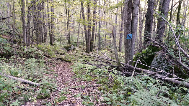 20161001_Cranberry_Backcountry_027