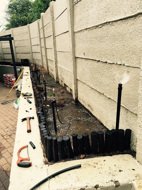 New vegetable garden