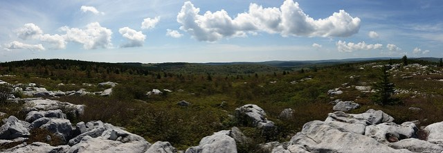 20160527_Dolly_Sods_166