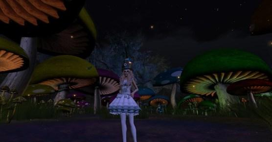 mushroom2_001