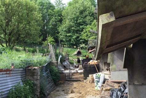 farm 3.3